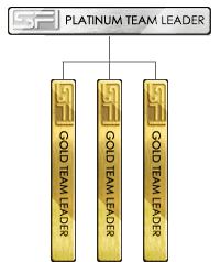 Bronze Team Leader